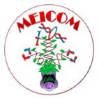 The MEICOM Network